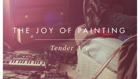 The Joy of Painting Tender Age LP Review