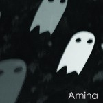 Amina Cannibalize CD Review