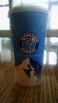 Elevation Burger (3365 Washtenaw Avenue, Ann Arbor, MI)