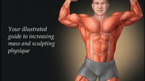 Bodybuilding Anatomy – 2nd Edition by Nicholas Evans