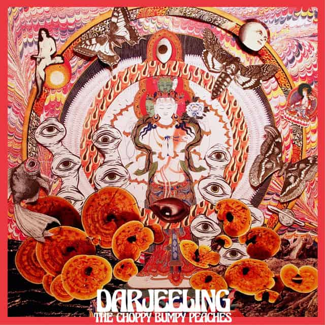 The Choppy Bumpy Peaches – Darjeeling