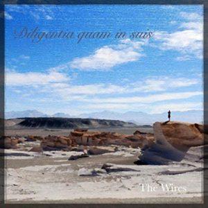 The Wires – Diligentia Quam in Suis