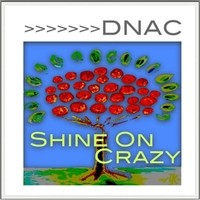 DNAC-Shine-On-Crazy-600x600-for-SKOPE_REVIEW