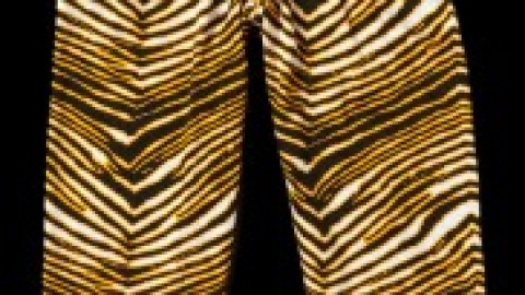Zubaz Pants (Purple/Gold)