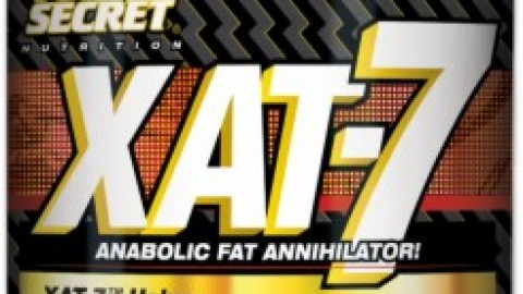 XAT-7 Review