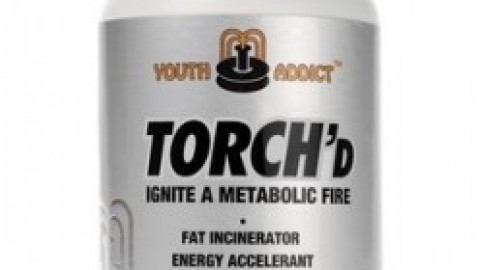 Torch'd (Youth Addict)